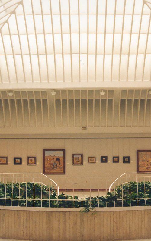 museo de tomelloso